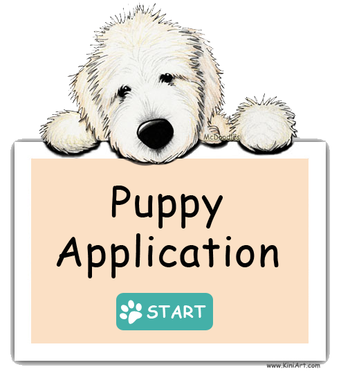 Moss Creek Goldendoodles Puppy Application